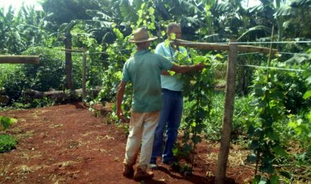 Agricultura familiar tem recebido apoio permanente em Papagaios