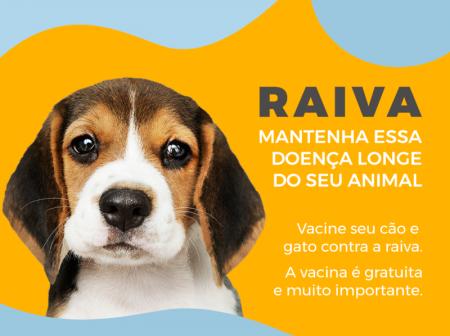 Dia 15/08 tem vacinação contra raiva em Papagaios
